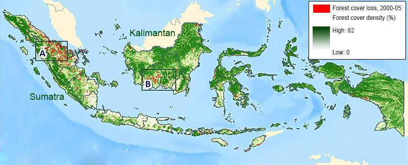 Geographical Location of Palm Oil Production
