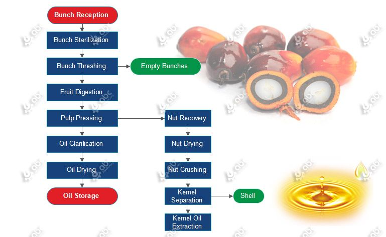 Small Scale Palm Oil Processing Mill Production Process