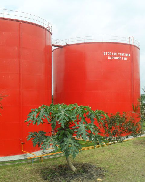 bulk palm oil storage silo