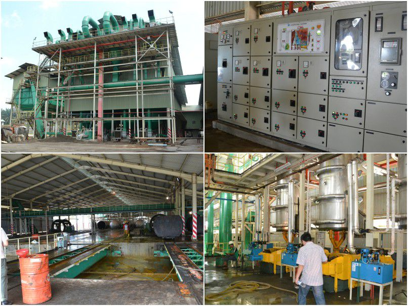 complete palm oil production company or factory