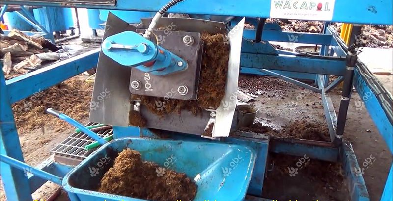 discharged palm kernel and fibre from oil press