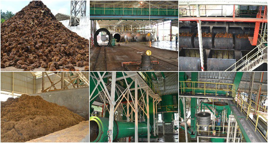 palm oil extractor process in palm oil mill plant
