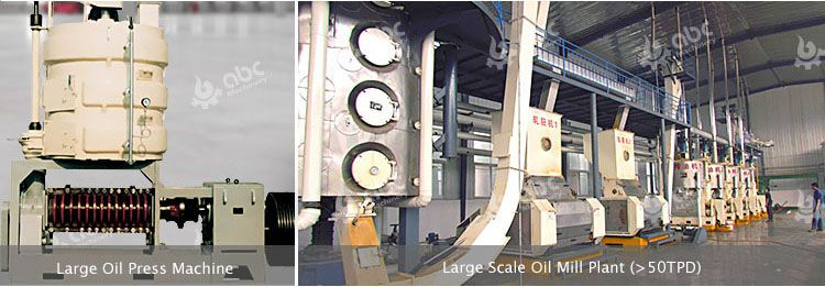 large scale palm kernel oil machine and processing plant