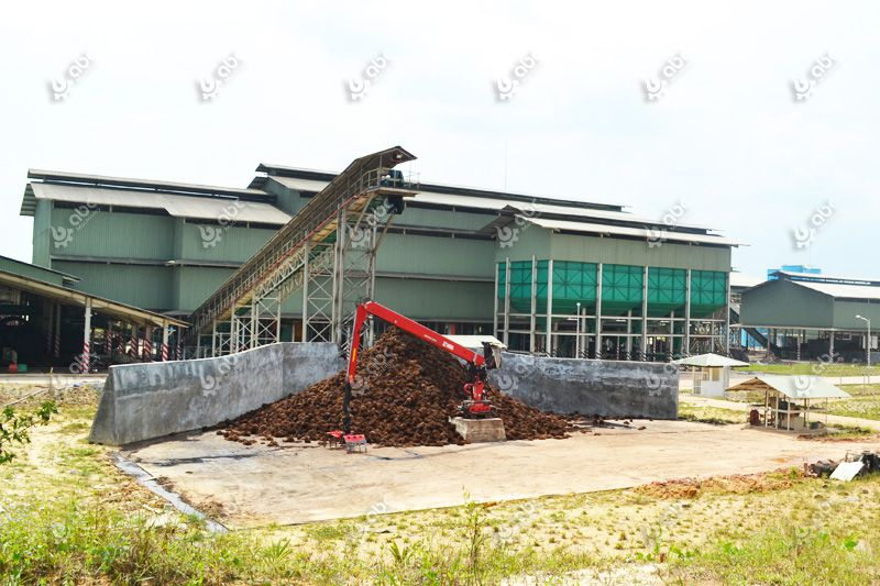 large scale palm oil mill plant for sale