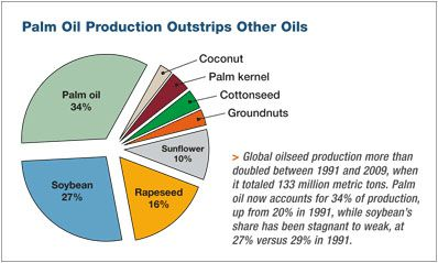 market of palm oil processing