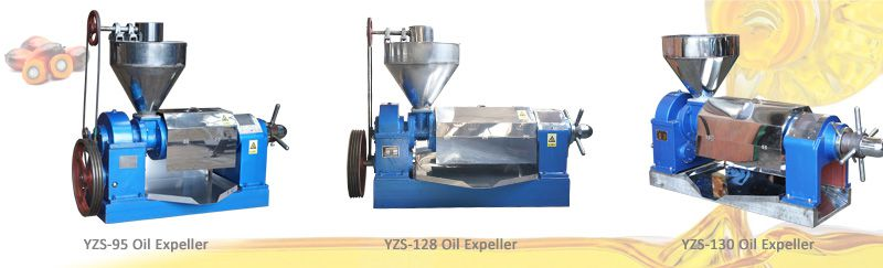 mini palm kernel oil pressing machine for sales