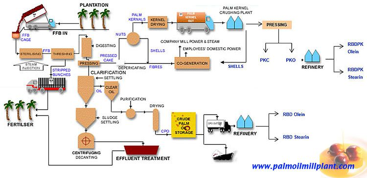 palm oil milling process