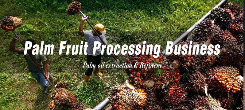 palm fruit processing business