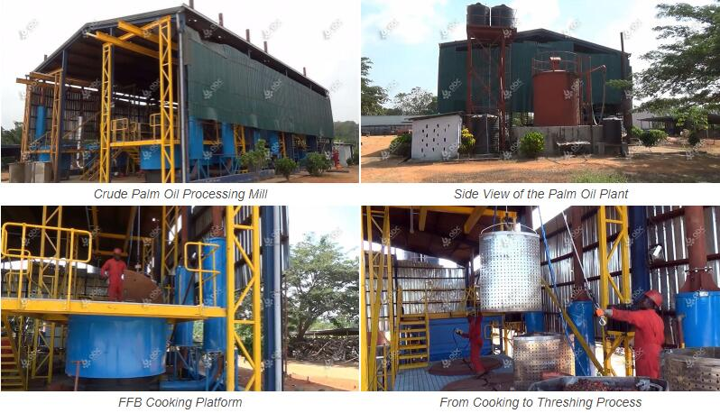 palm fruit processing plant project