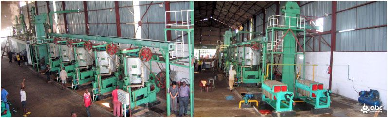 palm kernel crushing and processing plant