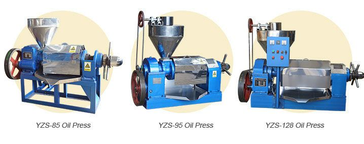 palm kernel oil expeller machine Malaysia