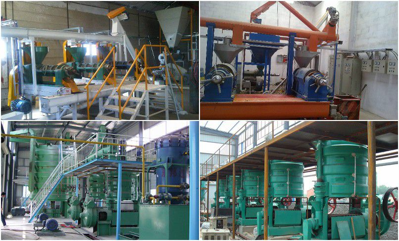palm kernel oil expeller machines at low cost