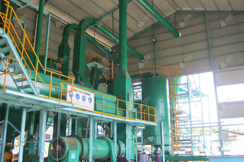 quality palm kernel oil extraction machine at factory price