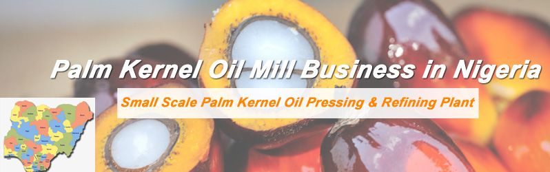 start palm kernel oil mill business in Nigeria