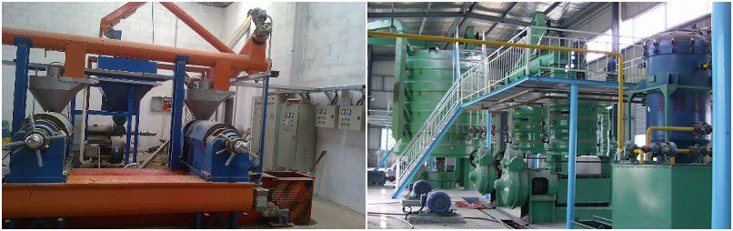 small and large palm kernel oil processing projects