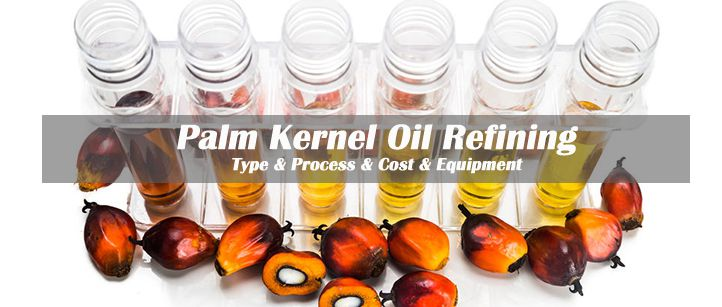 palm kernel oil reifning business