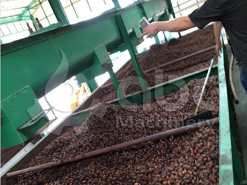 palm kernel recovery system