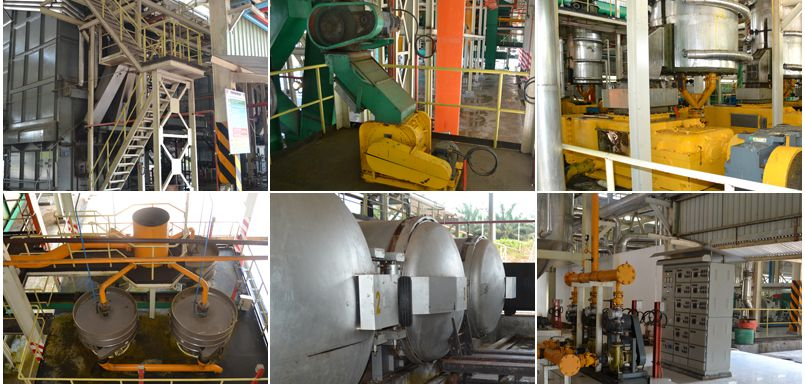 factory price palm oil extraction equipment