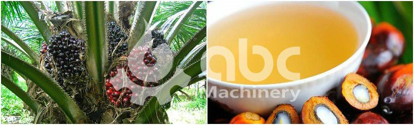 palm oil refinery manufacturer for high quality palm oil with manufacturing cost