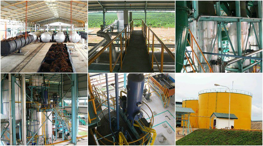 BEST palm oil making machines for sales