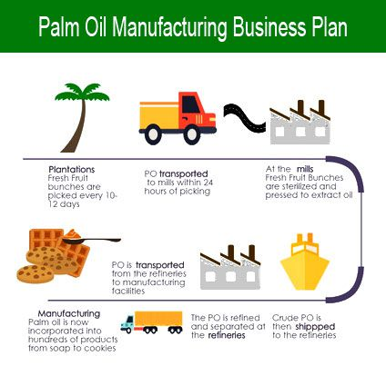 A Sample Palm Kernel Oil Production Business Plan Template