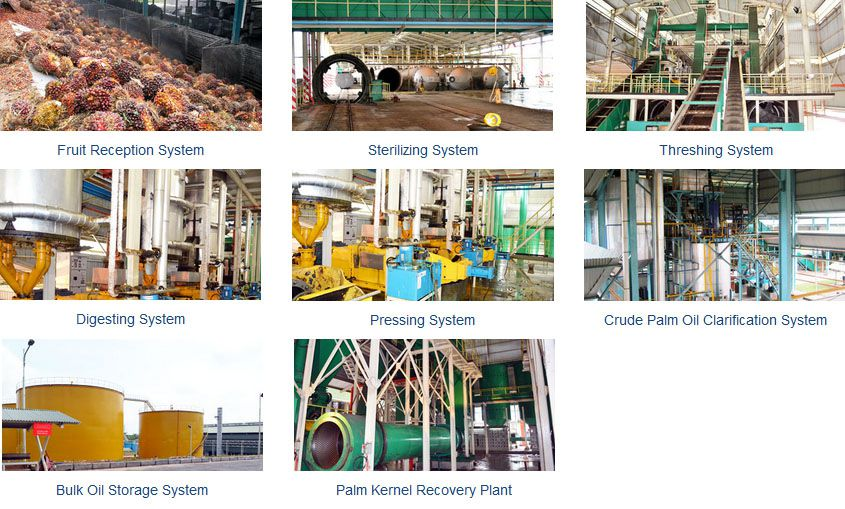palm oil manufacturing equipment for producing edible palm oil