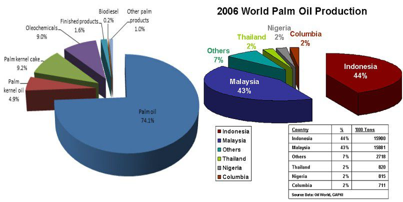 palm oil milling machine process and main palm oil producers with palm oil mill machinery
