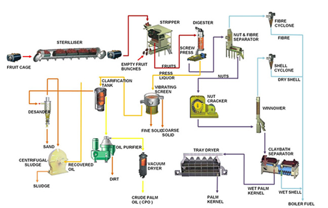 customized layout of palm oil refinery plant for efficient palm oil processing