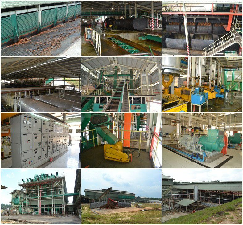 palm oil mill projects