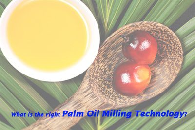 what is the right palm oil milling for palm oil process