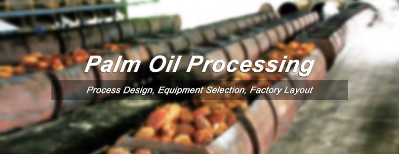 palm oil processing business guide