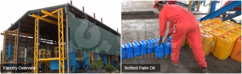 palm oil processing business plan