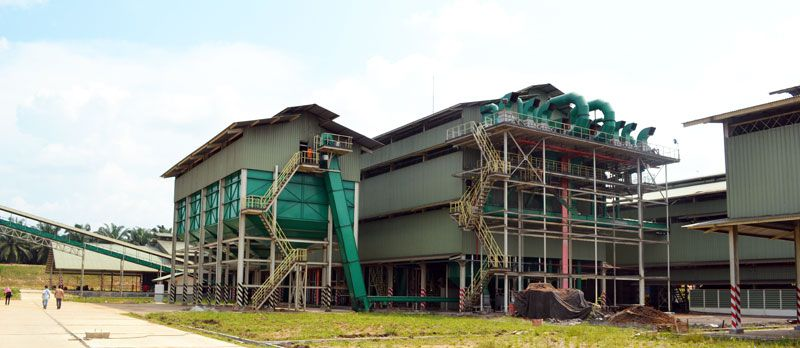 set up a palm oil processing factory to manufacture edible red palm oil