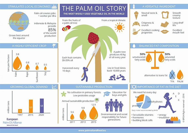 palm oil processing industry