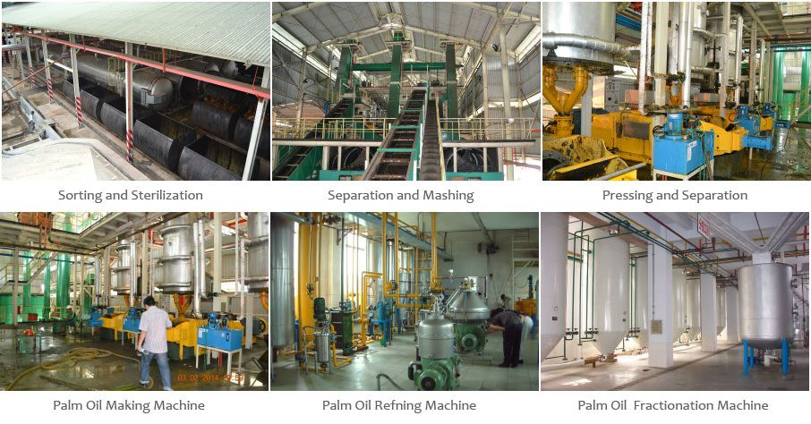 complete palmoil processing unit - start your own oil mill plant