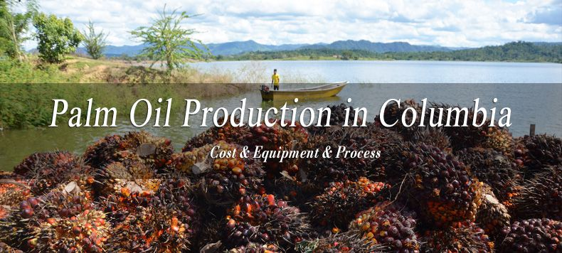 palm oil production in Columbia
