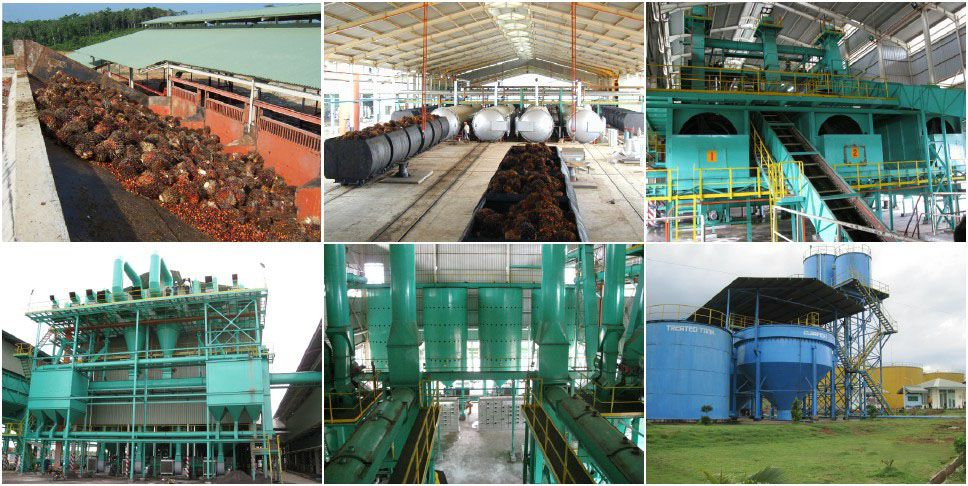 palm oil production plant projects