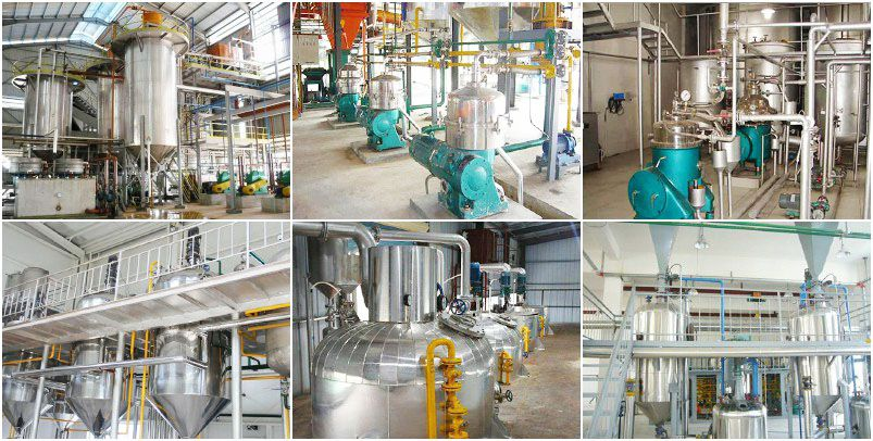 palm oil refining machines