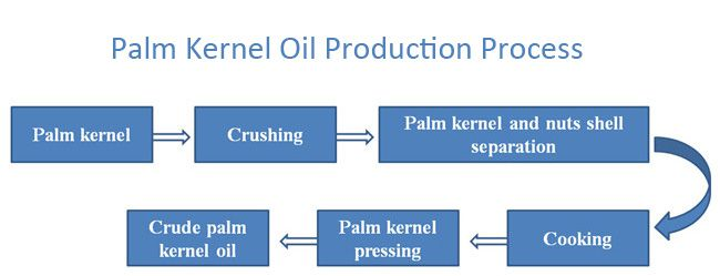 palm oil refinery business plan