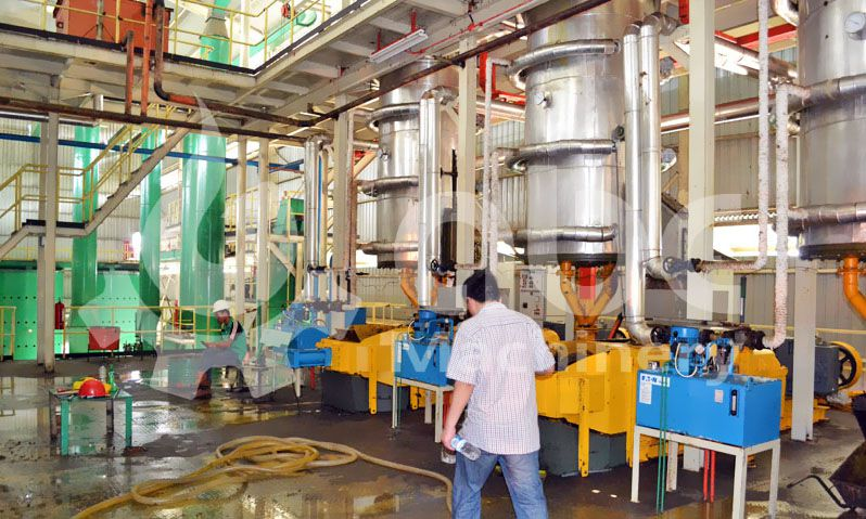 pressing section of palm oil processing mill