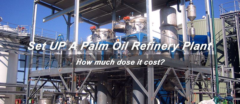 set up palmoil refinery plant