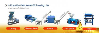 Palm Kernel Oil Extraction Machines - Key Factors of Production Business Plan