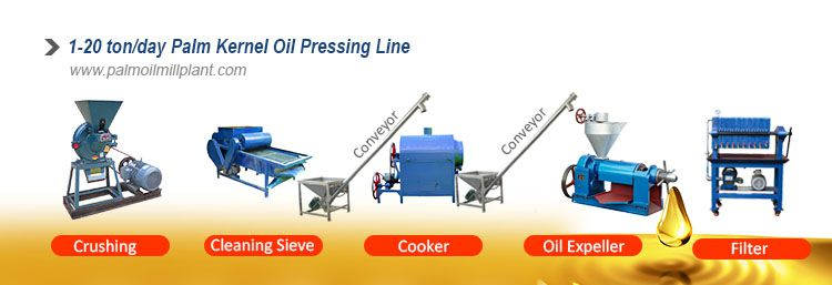 small palm kernel oil extraction plant and machine