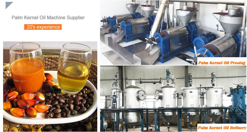 small scale palm kernel oil processing plant for sales