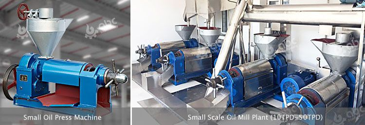 small palm kernel oil processing machien and plant
