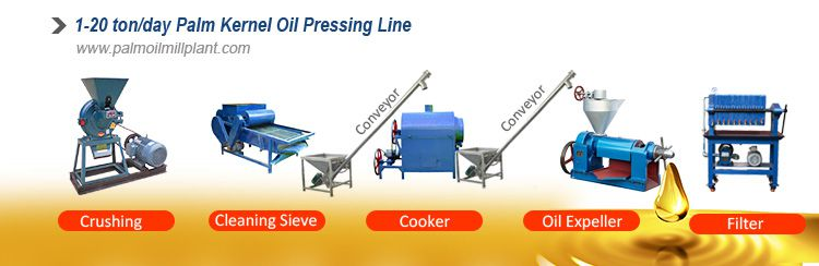 small palm kernel oil processing plant for sales