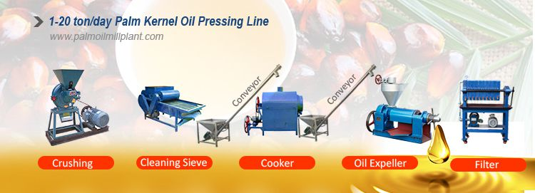 Palm Kernel Oil Production Line Cost and Equipment