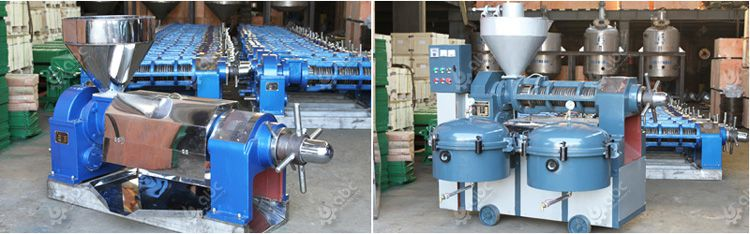 oil pressing machine for small scale palm kernel oil mill business