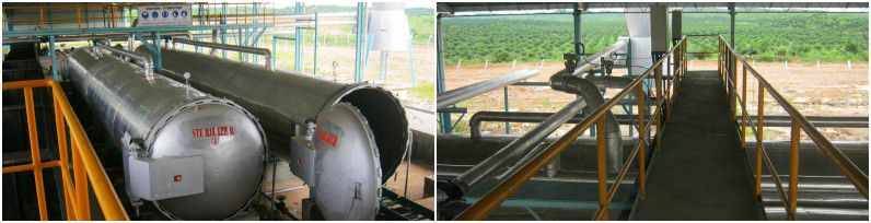 Sterilizing of palm oil extracting plant