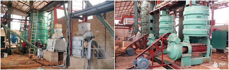 palm kernel processing plant turnkey projects